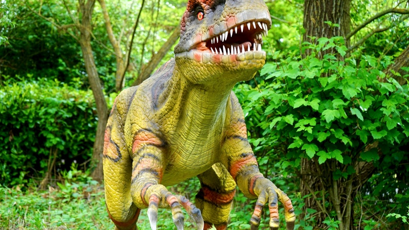 Best Dinosaur Toys : Best dinosaur toys our top picks